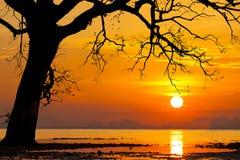 Beautiful sunset on a tropical island. Koh Mak. Thailand. Stock Image