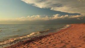 Beautiful sunset on a tropical sandy beach stock footage