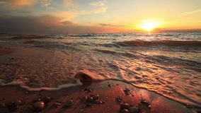 Beautiful sunset on a tropical sandy beach stock footage