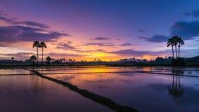 Beautiful sunset and twilight sky Stock Photos