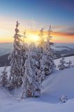 Beautiful sunset in winter Royalty Free Stock Photo