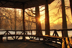 Beautiful sunset in a winter forest, Romania. A colorful sunset on a winter evening forest Stock Images