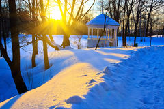 Beautiful sunset in a winter park Royalty Free Stock Photo