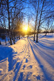 Beautiful sunset in a winter park Stock Photo
