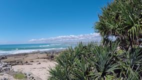 Beautiful sunshine coast in Queensland Australia. The sunshine coast is a popular travel destination for national and international tourists stock video footage