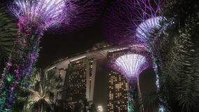 Beautiful Supertrees and the Marina Bay Sands Hotel in Singapore