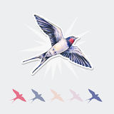 Beautiful swallow  sticker. Watercolor illustration. Spring bird brings love. Handwork Royalty Free Stock Image