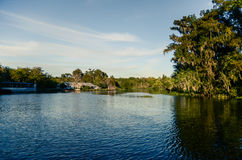 Beautiful swamp tour landscape Royalty Free Stock Images
