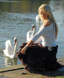 A beautiful swan. Concept of young woman turned into a beautiful swan royalty free stock photo