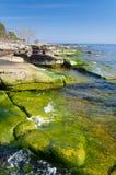 Beautiful Swedish green coast Royalty Free Stock Images