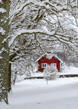 Beautiful Swedish winter Royalty Free Stock Image