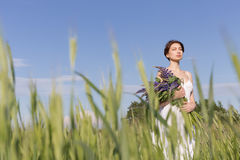 Beautiful sweet girl with a plait hair in a white summer sundress walking in a field with a bouquet of purple lupine flowers Stock Photography