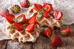 Beautiful sweet waffles with strawberries, powdered sugar. horiz Royalty Free Stock Photo