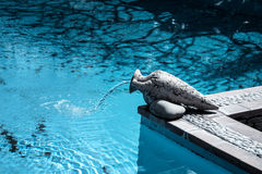 Beautiful Swimming pool Stock Photography