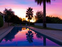 Beautiful swimming pool in the garde with palm trees and colorful sunset royalty free stock photography