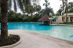 Beautiful swimming pool in hotel. Beautiful swimming pool surrounded by treess Royalty Free Stock Image