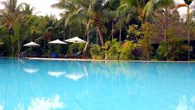 Beautiful swimming pool stock video footage