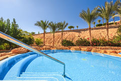 Beautiful swimming pool and palm trees in Egypt Royalty Free Stock Image