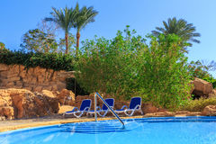 Beautiful swimming pool and trees in Egypt Stock Image