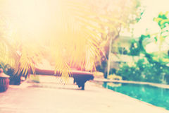 Beautiful Swimming Pool Tropical Resort Blured. Beautiful Swimming Pool Plank Bed Tropical Resort Palm Tree Branches Phuket Thailand Blurred Background Toned Stock Photo
