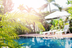 Beautiful Swimming Pool Tropical Resort Blured. Beautiful Swimming Pool Sunshade Plank Bed Tropical Resort Palm Tree Branches Phuket Thailand Blurred Background Royalty Free Stock Photo