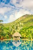 Beautiful swimming pool an tropical resort, vertical composition Royalty Free Stock Image
