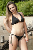 Beautiful Swimsuit Model. A gorgeous brunette young model posing on a sunny day at the beach Stock Photography