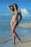 Beautiful swimsuit model in the tropical beach Stock Photos