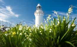 Beautiful Table Cape Lighthouse in Tasmania stock photo