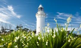 Beautiful Table Cape Lighthouse in Tasmania royalty free stock photo