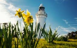 Beautiful Table Cape Lighthouse in Tasmania royalty free stock photos
