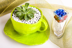 Beautiful table decorations on a net. Image of a big green paper mache cup holding a desert rose with white pebbles Royalty Free Stock Photography
