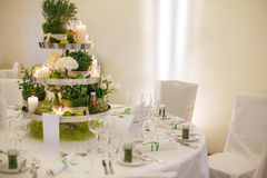 Beautiful table set  for green wedding or event party, indoors, Stock Photo
