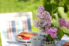 Beautiful table setting for dinner outdoors Royalty Free Stock Photo