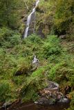 Beautiful tall waterfall flowing over lush green landscape folia. Stunning tall waterfall flowing over lush green landscape foliage in early Autumn royalty free stock photo