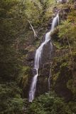 Beautiful tall waterfall flowing over lush green landscape folia. Stunning tall waterfall flowing over lush green landscape foliage in early Autumn royalty free stock photos