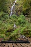 Beautiful tall waterfall flowing over lush green landscape foliage in early Autumn coming out of pages of open story book. Stunning tall waterfall flowing over stock photo