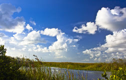 The beautiful tamiami trail Royalty Free Stock Image
