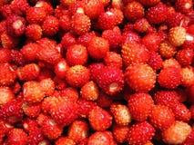 Red ripe strawberries pattern Royalty Free Stock Photo