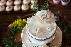 Beautiful and tasty wedding cake. Stock Images