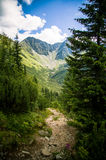 A beautiful Tatry mountain landscape. In summer royalty free stock image