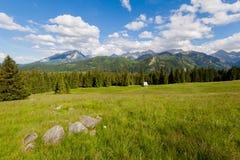 Beautiful Tatry Rusinowa Polana landscape. Beautiful panorama in Tatry mountains glade, Rusinowa Polana stock image