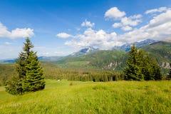Beautiful Tatry Rusinowa Polana landscape. Beautiful panorama in Tatry mountains glade, Rusinowa Polana royalty free stock photos