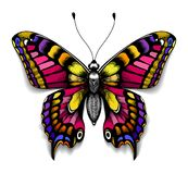 Beautiful tattoo for your chest.Colorful Machaon butterfly.Tropical realistic butterfly with shadow.Symbol of femininity. Beautiful tattoo for your chest Royalty Free Stock Images