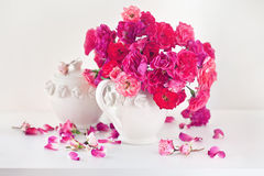 Beautiful tea roses Royalty Free Stock Image