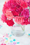 Beautiful tea roses Stock Image