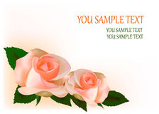 Beautiful tea roses,  illustration Royalty Free Stock Image