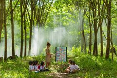 Beautiful teacher in uniform teaching her students outdoor class Royalty Free Stock Photography