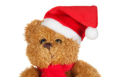 Beautiful teddy bear with scarf and Christmas hat Royalty Free Stock Photo