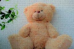 Beautiful teddy bear sitting on a light background close up stock photos